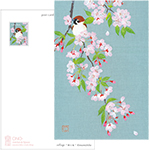 PostCard  櫻と雀