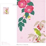 Post Card   椿とメジロ