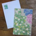 紫陽花とドクダミ