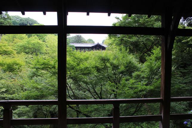 20157東福寺