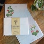 A5 レターセット 植物図鑑 苺とラズベリー